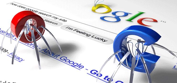 Araña de Google